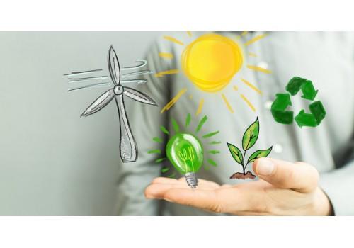 Recursos (defesa) de multas ambientais